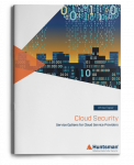 Cloud Security Service Options for Cloud Service Providers